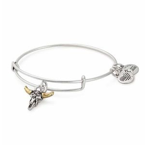 Alex and Ani skull charm expandable wire bracelet